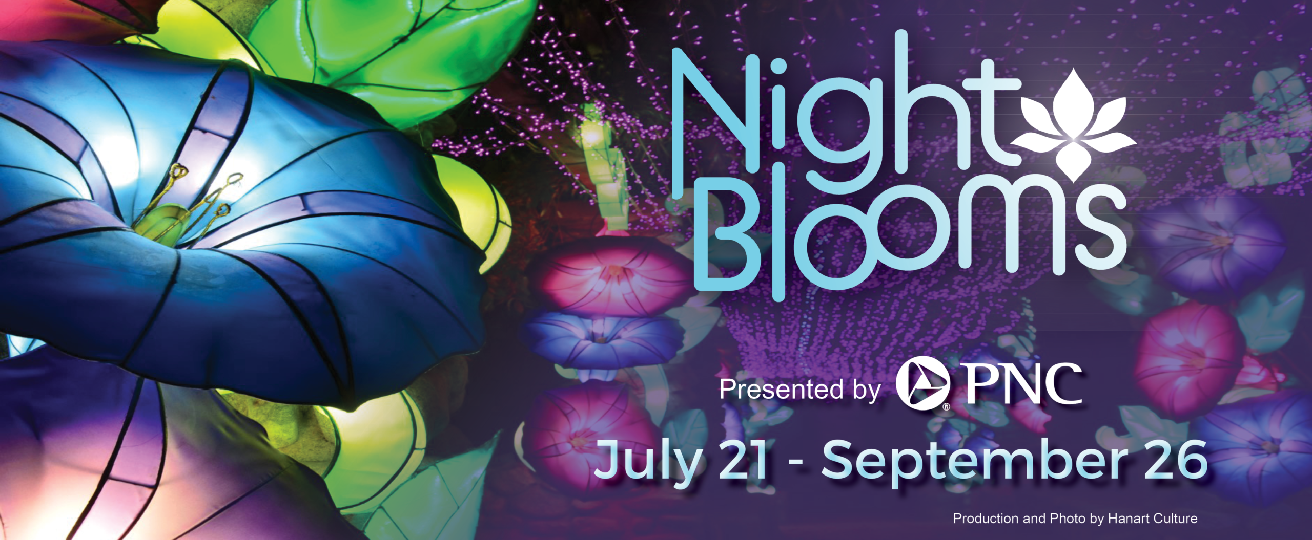 Night Blooms Home Page